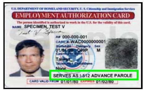 Uscis Starts Issuing A Single Combined EadAdvance Parole Card